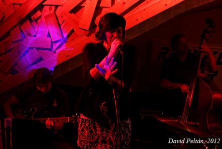 Eva Emingerová vystoupila v Táboře s mladými jazzmeny