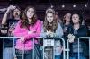 Den vBudvaru 2014: Narozeninová párty jaksepatří. Hráli Framus 5, Wohnout i Bílá