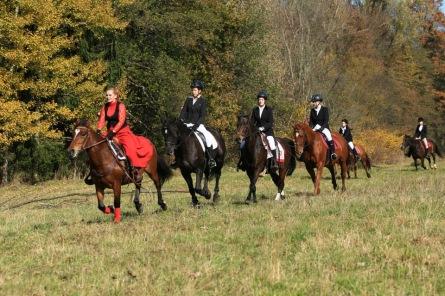Milovníci koní si přijdou na své. Jezdce však nemine soud