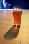 Pivní slavnosti Tábor 2016 odstartovaly, vrcholem bylo vystoupení skupiny Blue Effect