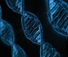 Jak z Kriminálky Las Vegas. Science Café v Jindřichově Hradci představí forenzní genetiku