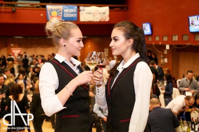 Soutěž o 12 volných vstupů na zahajovací Velký košt na Festivalu vína