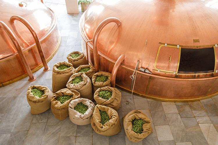 Budějovický Budvar zve na divadelní prohlídky pivovaru. Začnou na Valentýna