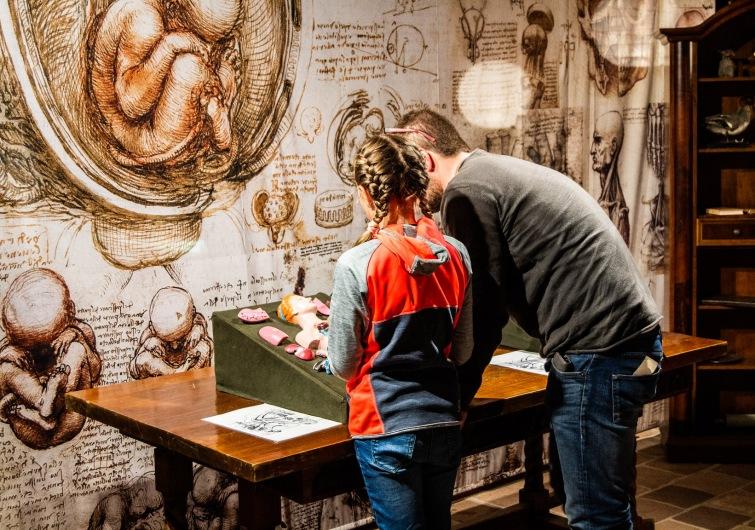Výstava Leonardo da Vinci v Českých Budějovicích má úspěch. Je prodloužená