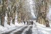 Krásné počasí turisty na Hrejkovickou dvacítku vylákalo. Pochod můžete jít až do Velikonoc