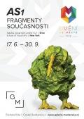 Umění ve městě-AS1 Fragmenty současnosti