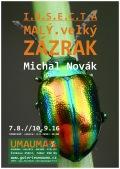 Výstava: Michal Novák / I.N.S.E.C.T.A.