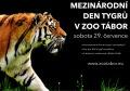 Mezinárodní den tygrů