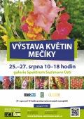 Výstava květin - mečíky