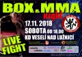 Exhibice Box a MMA Night