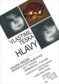 HLAVY Vlastimila Tesky v českobudějovické Galerii Hrozen