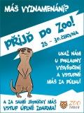 Vysvědčení v zoo