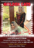Travesti Show v Táboře