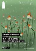 Kamila Doubková - Obrazy